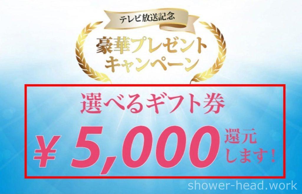 ミラブル5000円ギフト券プレゼント